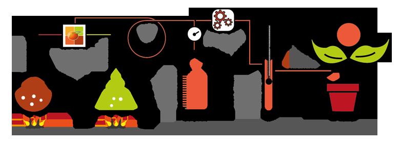 process marketing emandarine